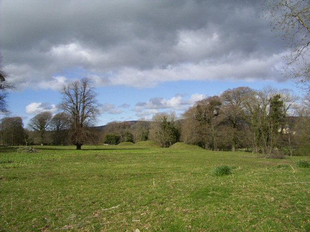 View towards the River Lee from Ballycarty House ruins, 2004